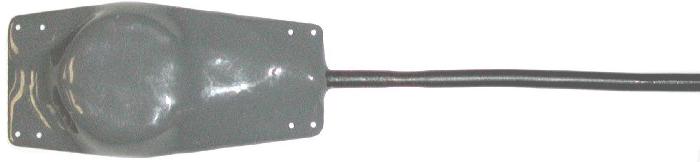 ri-2a
