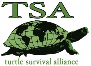 TSA 2017 - 15th Annual Symposium on the Conservation and Biology of Tortoises and Freshwater Turtles @ DoubleTree by Hilton Hotel and Suites | Charleston | South Carolina | United States
